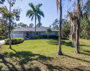 6470 Bottlebrush Ln, Naples image