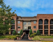 14316 Conway Meadows  Court Unit #207, Chesterfield image