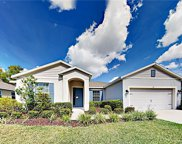 516 Morgan Wood Drive, Deland image