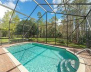 2326 Butterfly Palm Dr, Naples image
