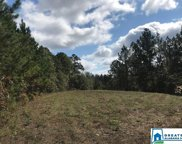 Sportsman Lake Rd Unit 73 Acres, Odenville image