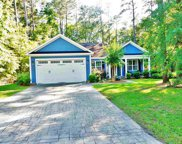 175 Otter Run Rd., Pawleys Island image