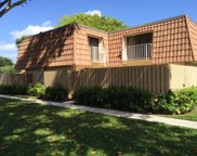 575 Green Springs Place, West Palm Beach image