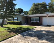 2788 Robinwood Drive, Clearwater image