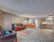 422 Wright Street Unit 101, Lakewood image