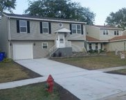 20513 South Acorn Ridge Drive, Frankfort image