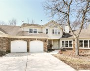 295 Willow Parkway, Buffalo Grove image