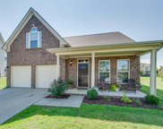 3002 Hope Circle, Spring Hill image