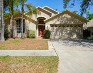 2534 Clareside Drive, Valrico image