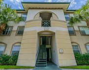 17110 Carrington Park Drive Unit 824, Tampa image
