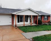 5367 Glencullen Way, St Louis image