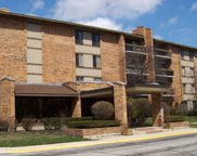 201 Lake Hinsdale Drive Unit 309, Willowbrook image