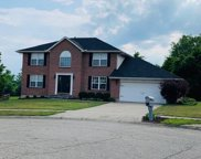 4773 Appaloosa  Court, Liberty Twp image