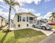 4541 E Washington Way, Estero image