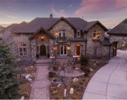 1407 Cactus Rose Circle, Castle Rock image