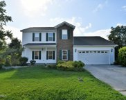 204 Weeping Hollow Court, Jacksonville image