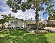 4514 S Renellie Drive, Tampa image