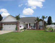 723 Golden Eagle Dr., Conway image