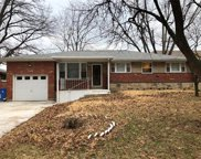1140 Spring Valley, Florissant image