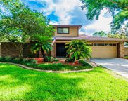 4804 Hayride Court, Tampa image