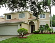 18173 Sandy Pointe Drive, Tampa image
