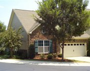 4523  Blackmuir Wood Circle, Charlotte image