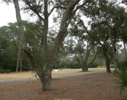 32 Wood Duck Court, Hilton Head Island image