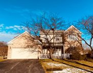 45 Trotwood Court, Buffalo Grove image
