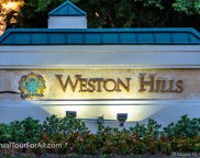 2692 Center Ct Dr Unit #2-32, Weston image