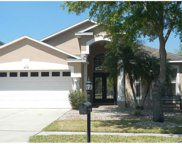 18172 Sandy Pointe Drive, Tampa image