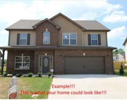 103 Summerfield, Clarksville image