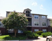 11709 OLDE ENGLISH DRIVE Unit #D, Reston image