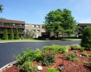 2650 Brookwood Way Drive Unit 120B, Rolling Meadows image