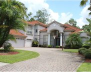 1312 Preservation Way, Oldsmar image