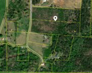 Lot 11 County Road 788, Etowah image