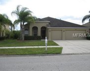 10417 Meadow Spring Drive, Tampa image