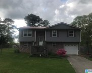 6434 Womack Rd, Pinson image
