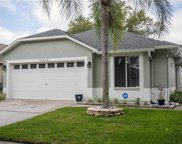 18124 Canal Pointe Street, Tampa image