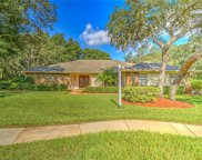 2907 Chelsea Woods Drive, Valrico image