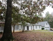 2212 SW Independence Drive, Conyers image