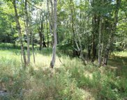Maplewood Gardens  Road, Monticello image