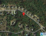 6620 Trussville Clay Rd Unit 3.85 acres, Trussville image