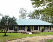 5309 Ne County Road 337, High Springs image