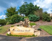 1916 Cherokee Bluff Drive Unit 71, Knoxville image
