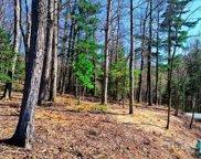 000 Horizon  Lane, Flat Rock image