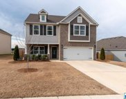 1123 Pine Valley Dr, Calera image