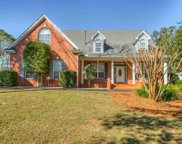 1272 E Conservancy, Tallahassee image