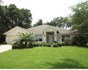 1500 Cashiers Drive, Winter Garden image