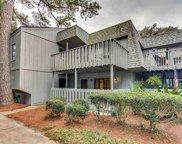 118 Salt Marsh Circle Unit 25-E, Pawleys Island image