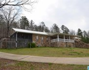 111 Bob Smith Rd, Remlap image